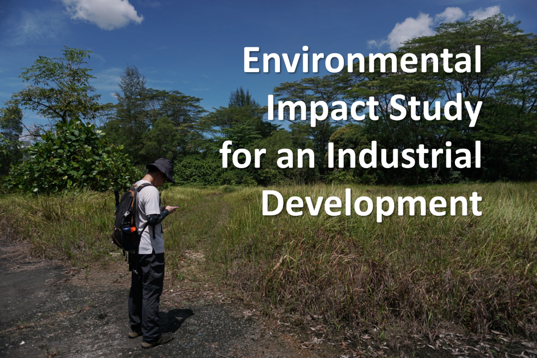 Environmental Impact Study (EIS) for an industrial development in north-western Singapore