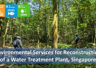 Environmental Services for the Reconstruction of a Water Treatment Plant in Singapore