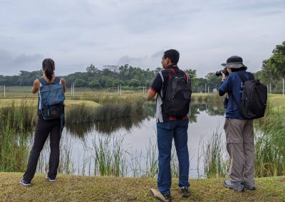 SITE ASSESSMENT AND ENVIRONMENTAL IMPACT STUDY IN SINGAPORE