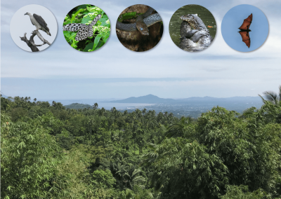 BIODIVERSITY SCREENING OF AN ISLAND OFFSHORE OF SABAH, MALAYSIA