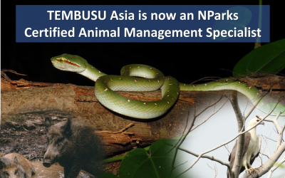 TEMBUSU Asia is now an NParks Certified Animal Management Specialist
